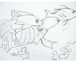 tropische_vissen_1